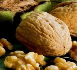 Описание сортов грецкого ореха