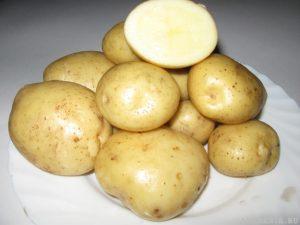 Фреско сорт картофеля
