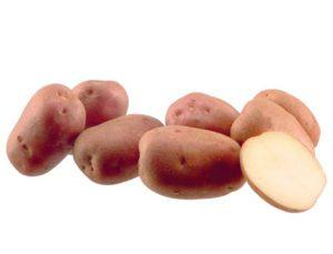 Курода картофель
