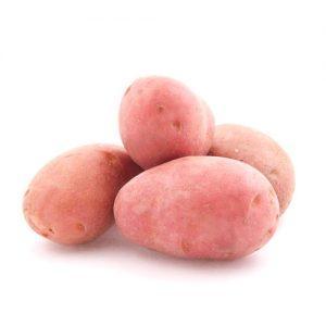 Мрия сорт картофеля