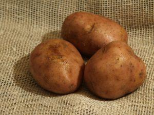 Серпанок сорт картофеля