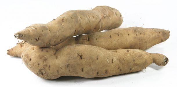 сладкий картофель сорта