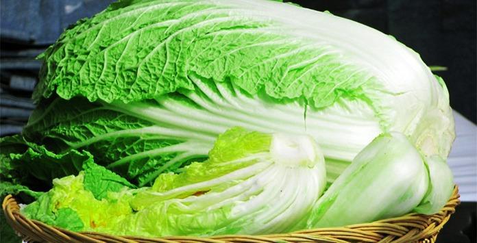 Польза и вред пекинской капусты: лечебные свойства для организма, влияние на здоровье