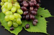 Ампелотерапия - виноград в народной медицине