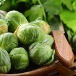 Выращивание и уход за брюссельской капустой
