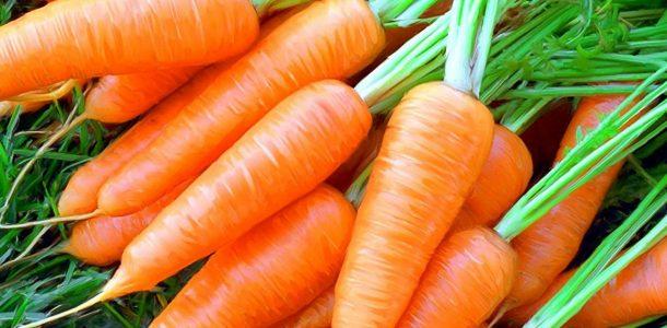 витамины моркови